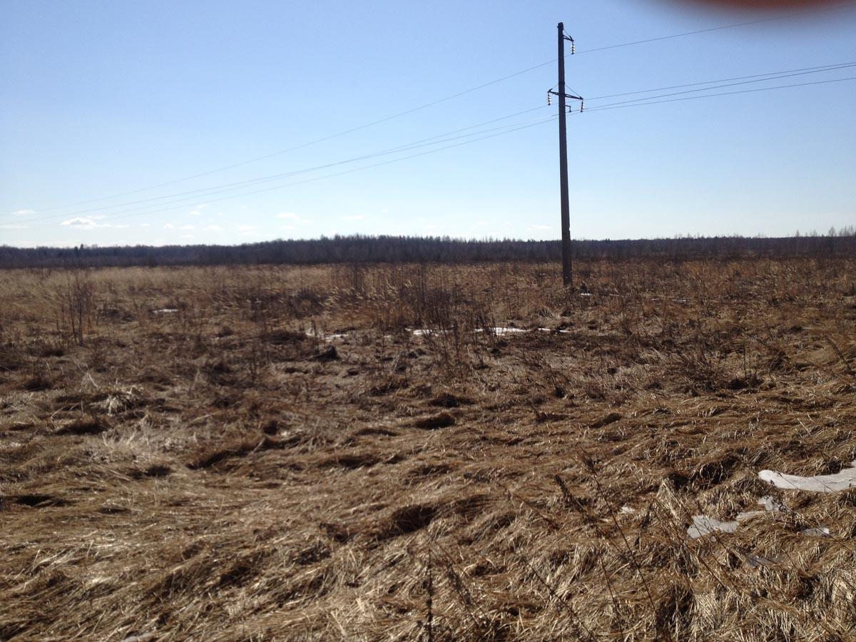 По участку проходит линия электропередач - Продажа земли сх назначения в Тверской области