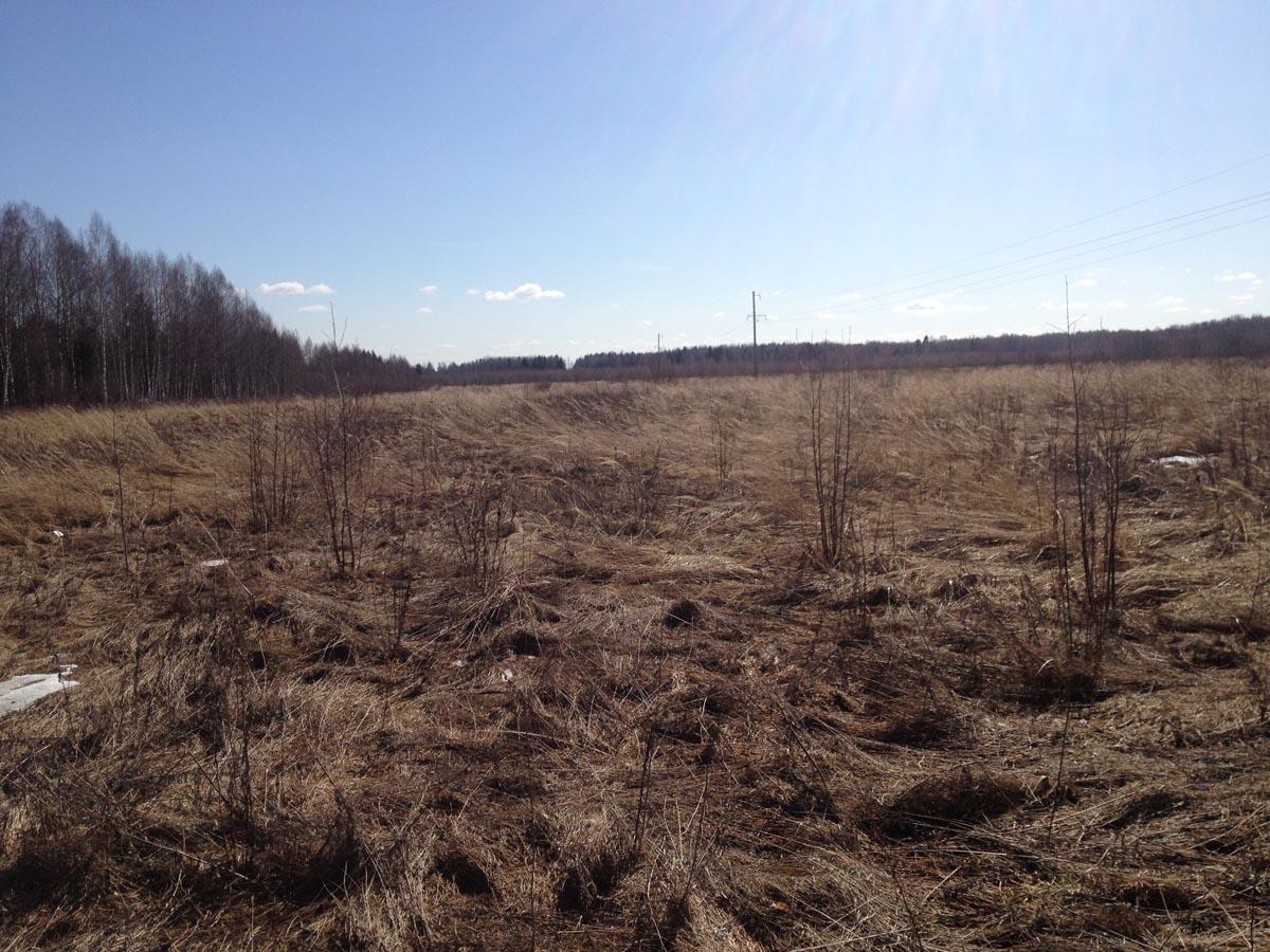 Фото с территории участка на автомагистраль - земля сх назначения в Тверской области