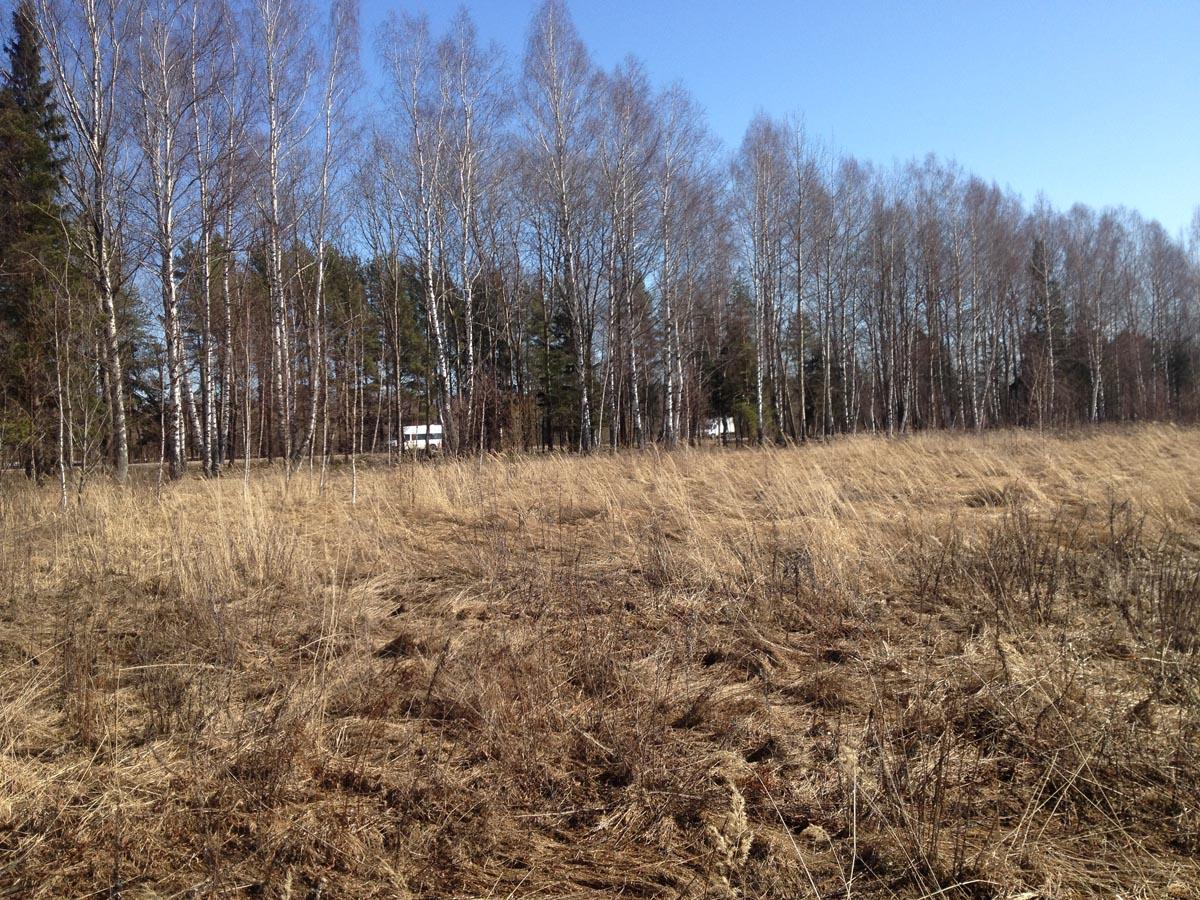 Фото с территории участка на автомагистраль - Земельный участок сельхозназначения в Тверской области
