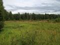 фото: Участок сельхозназначения в Тверской области